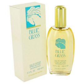 Blue Grass By Elizabeth Arden Eau De Parfum Spray 3.3 Oz