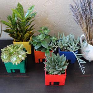 Green Homemade Christmas Gift Ideas