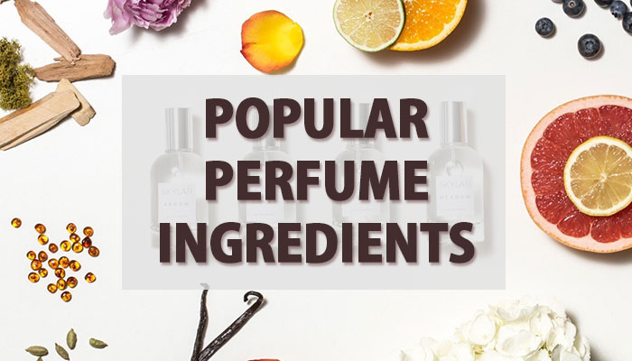 Popular Perfume Ingredients From A to Z