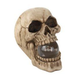 Skull With Led Light Up Ball